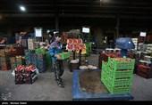 ایلام تنها استان فاقد میدان میوه و ترهبار/ عامل گرانی قیمت میوه چیست؟