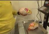 «مرغ ایرانی»|مرغ سایز گوشت بیشتری از مرغ درشت دارد! + فیلم