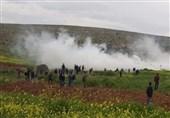 کرانه باختری| حمله نظامیان صهیونیست به کشاورزان فلسطینی در غرب «سلفیت»