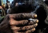 عرضه مواد مخدر در استان سمنان افزایش پیدا کرد