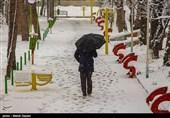 هواشناسی ایران 99/10/29|بارش برف و باران در 8 استان تا جمعه/ هوا 15 دجه سرد میشود