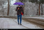 هواشناسی ایران 99/11/27|آغاز بارش برف و باران در 11 استان از فردا/ هشدار وزش باد شدید و کاهش دما