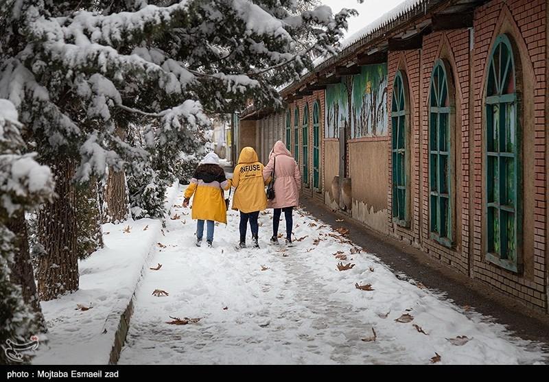 Some 8,000 New Coronavirus Cases Detected in Iran