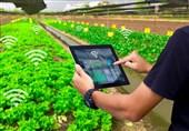 """تکنولوژی """"آبیاری هوشمند باغات و مزارع کشورمان"""" به کمک تامین حقآبه تالابها آمد!"""