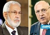 سفر یک هیئت بلندپایه مصری پس از 6 سال به لیبی/ تاکید قاهره بر گسترش همکاری با طرابلس