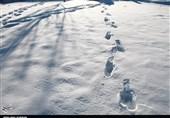 کولاک برف در راه استان البرز/ دمای هوا تا 10درجه کاهش مییابد