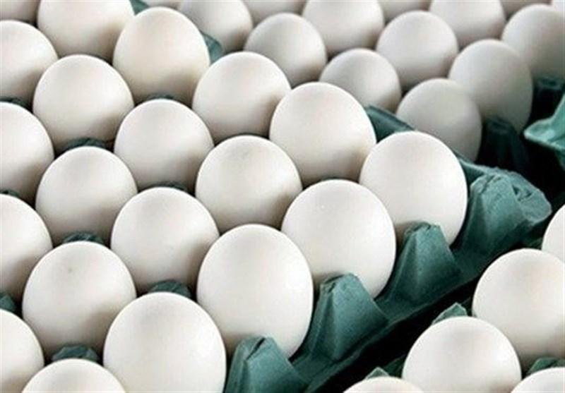 یک مقام مسئول: برای خرید تخم مرغ به قیمت مصوب به تهرانپارس بروید