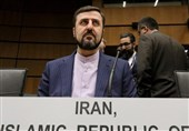 No Interruption to Enrichment in Natanz Nuclear Site: Iran's IAEA Envoy