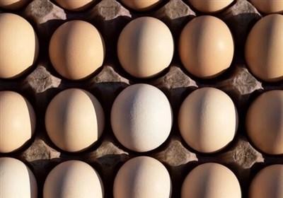 قول هایی که تو زرد از آب درآمد/تخم مرغ به شانه ای ۴۸ هزار تومان پرکشید!