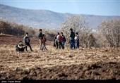 تداوم مشکلات اینترنت در روستاهای استان زنجان/ وعدههایی که بر زمین ماند