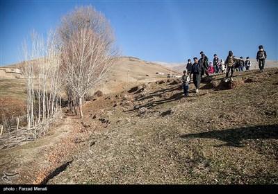 در جستجوی شاد - کرمانشاه