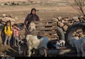 کوچ بهاره عشایر خراسان جنوبی به مناطق ییلاقی آغاز شد