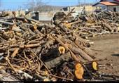 85 تن چوب درخت بلوط در شهرستان بروجرد کشف شد