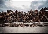 قاچاق چوب به کشور انکارناپذیر است/ استفاده از پهپاد برای کشف قاچاقچیان