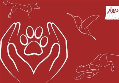 ۵ نکته طلایی درباره گزارش آگهیهای ممنوعه حیات وحش در سایت دیوار