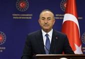 وزیر خارجه ترکیه: سیگنالهای مثبتی از امارات و مصر دریافت کردیم