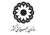 مدیرکل بهزیستی زنجان: هزینه واریزی به مستمریبگیران در مقابل تورم و گرانی جامعه بیفایده است