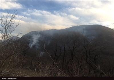 آتش در پارک ملی گلستان کاملا خاموش شد/ نیروها در حال پایش منطقه حریق هستند