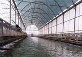 چه میزان منابع آبی استان ایلام صرف کشاورزی میشود؟
