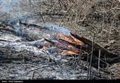 خشکسالی و احتمال افزایش آتشسوزی در مراتع بروجرد؛ اکیپهای 24 ساعته اطفاء حریق تشکیل شد