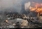 امحای بیش از یکتن مواد مخدر در قزوین به روایت تصویر
