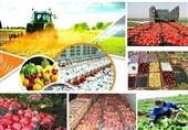 فرماندار آران و بیدگل: راهاندازی «روستا بازار» جهت عرضه وفروش تولیدات کشاورزی ضرورت دارد