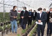 دادگستری اردبیل از سرمایهگذاران و فعالان کشاورزی حمایت همهجانبه دارد