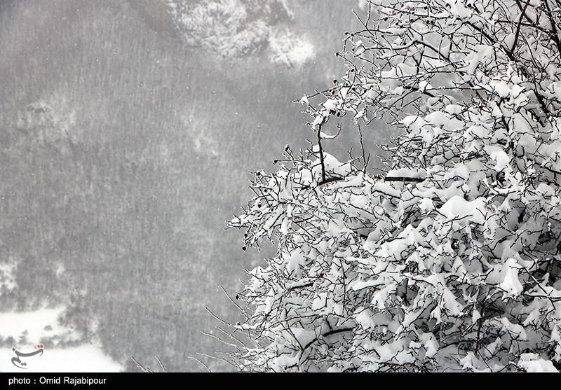 هواشناسی ایران 99/11/7| سامانه بارشی جدید در راه است/ بارش برف، باران و وزش باد شدید از پنجشنبه