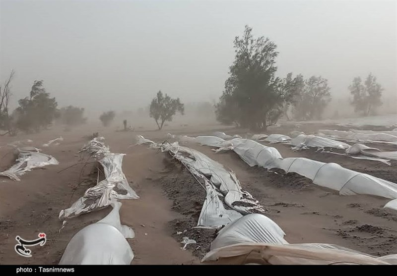 """طوفان """"کشاورزی"""" مردم زهکلوت را با خاک یکسان کرد / مسئولان به یاری مردم منطقه بشتابند + فیلم"""