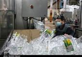 بروکراسی اداری مانع بزرگی سر راه تولید در قشم است
