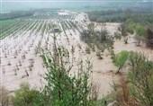 اعتباری برای جبران خسارت اراضی تخریبی ناشی از سیل به لرستان اعلام نشده است