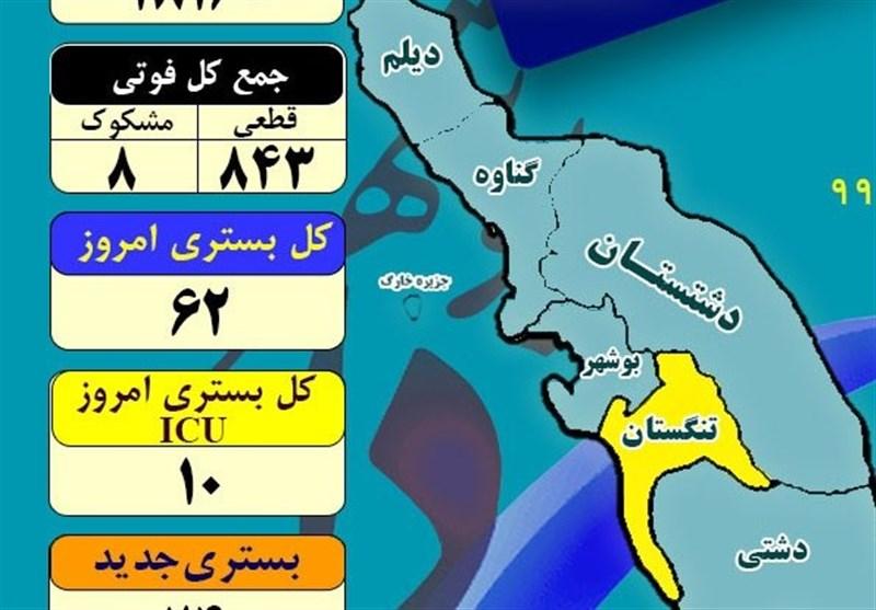 آخرین وضعیت شرایط کرونایی استان بوشهر| اجرای طرح شهید سلیمانی ابتلا به کرونا کاهش داد+جدول