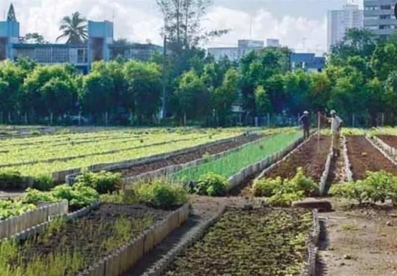 """مشهدمقدس دارای نخستین """"پارک کشاورزی"""" کشور میشود"""