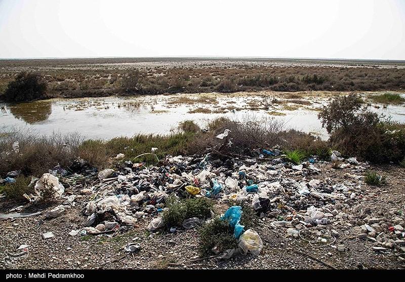 آلودگی های زیست محیطی ,