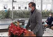 معاون وزیر جهاد کشاورزی در قزوین: باغات میوه برای جلوگیری از سرمازدگی سایباندار میشوند