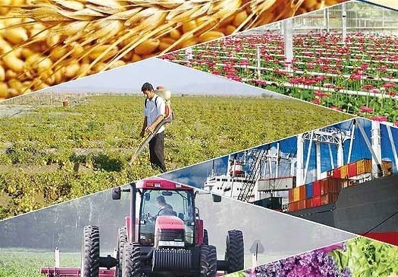 عقب ماندگی تاریخی کشاورزی در ایجاد صندوق های ضمانت سرمایه گذاری