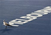 توقف تنیس ملبورن به دلیل هجوم مرغهای دریایی