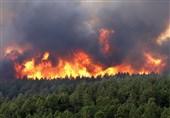 """آتشسوزی در ارتفاعات """"قیروزکارزین"""" استان فارس مهار شد"""
