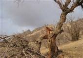 بحران آب در ایران| قلب تپنده استان اصفهان از حرکت ایستاد / زایندهرود خشک شد، تولید در نطنز از حرکت ایستاد
