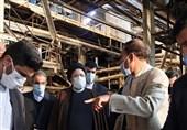 بازدید رئیس قوه قضائیه از مجتمع فولاد ارومیه / رئیسی: تجهیز 85 درصدی امکانات و تاخیر در راهاندازی هیچتوجیهی ندارد / ضربالاجل 2 ماهه برای افتتاح مجتمع