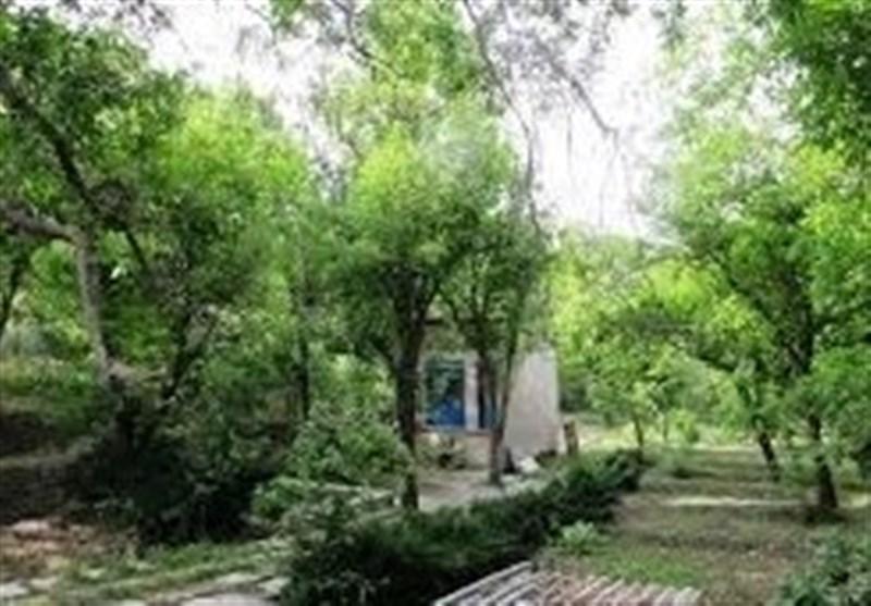 ساخت مجموعه تفریحی فرهنگی 5 هزار متری در باغ کن