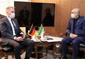 دیدار سفیر آلمان با علی اکبر صالحی
