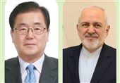 Iran's Zarif, South Korean FM Discuss Bilateral Ties