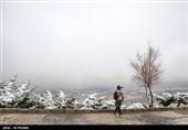 هواشناسی ایران 99/12/11|بارش برف و باران در 20 استان/ سامانه بارشی جدید در راه است