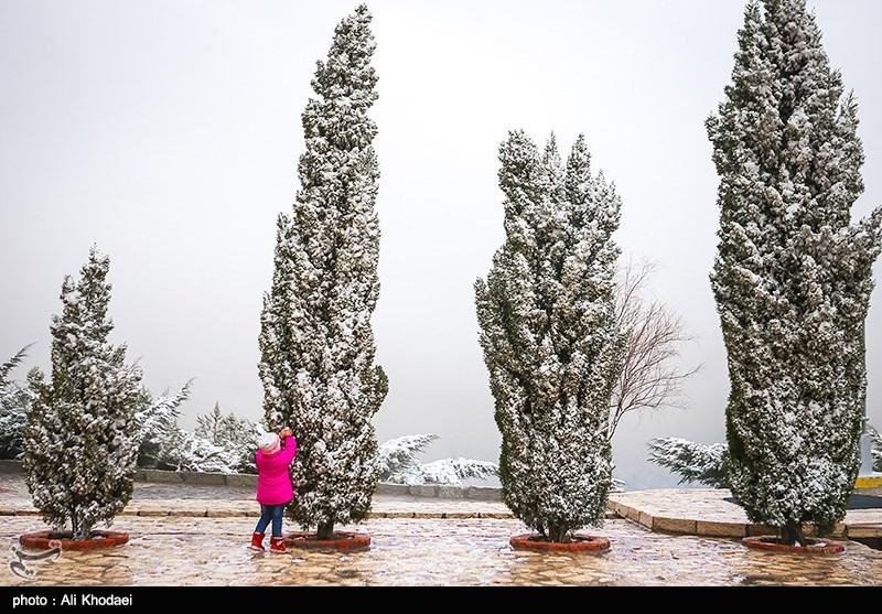 هواشناسی ایران 99/12/10  ورود سامانه بارشی جدید به کشور/ بارش برف و باران 6 روزه در 22 استان