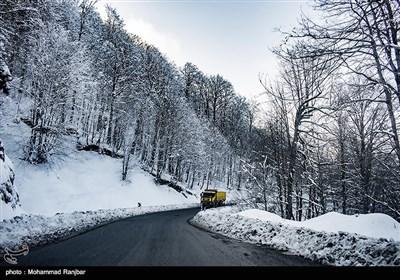 هواشناسی ایران ۹۹/۱۲/۱۴| برف و باران کشور را فرا میگیرد