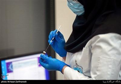 صدور مجوز تست انسانی واکسن شهید فخریزاده/ چند واکسن ایرانی کرونا به مرحله آزمایش انسانی رسیدهاند؟