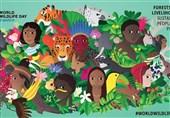 اتکای معیشت 350 میلیون انسان به گونههای مختلف جنگلی