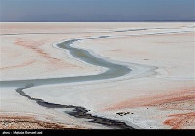 کاهش آب دریاچه ارومیه از اواسط دهه 80 بصورت جدی آغاز شد و در سال 1394 آب دریاچه ارومیه به کمترین میزان خود طی سه دهه اخیر رسید . کاهش آب و خشک شدن دریاچه ارومیه دلایل متعددی دارد که از جمله مهمترین آنها ، کاهش بارش در حوضه آبریز دریاچه در سال های اخیر ، توسعه بی رویه کشاورزی و حفر چاه ها ، ایجاد سد و احداث پل میانگذر است.