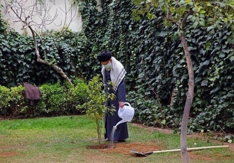 امام خامنهای دو اصله نهال در حیاط بیت رهبری کاشتند